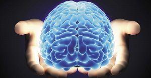 Beyniniz Nasıl Çalışır? Efsaneler ve Gerçekler.