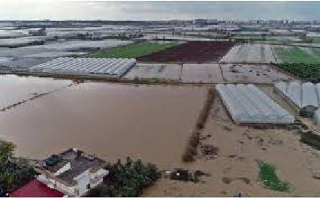 Antalya'da sel 9 bin 530 dekar ekili alana zarar verdi