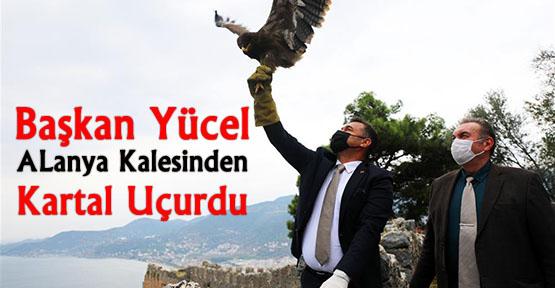 Başkan Yücel iyileşen Kartal'ı Alanya Kalesi surlarından doğaya saldı.