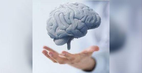 Beyin hücrelerini besleyerek unutkanlığa iyi gelen 8 besin