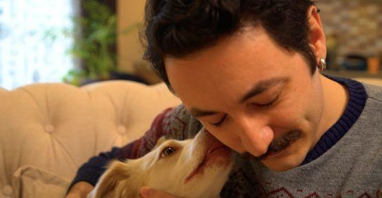 Yavru Köpek Eğitiminin İpuçları Dostumun Dünyası'nda!