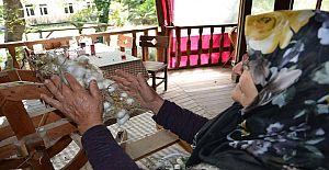 Alanya Sapadere, ipekböcekçiliğinin merkezi olacak