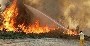 Orman yangını manipülasyonları çöktü!