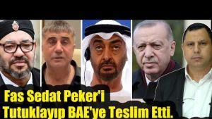 Fas Sedat Peker'i Tutuklayıp BAE'ye Teslim Etti.. Suud, Soylu'yu Öldürme Dizisi Çekti